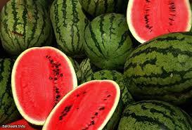 صادرات هندوانه به چین